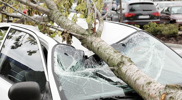 Primary Coverage: Public Housing Automobile Insurance